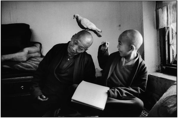 Buddhist monks par Martine Franck